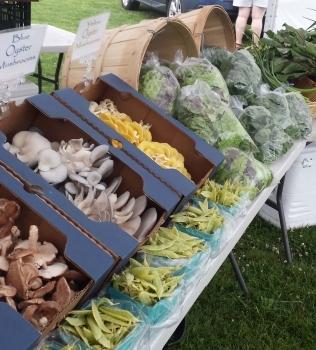 Montauk Farmers Market Returns For The 2016 Season