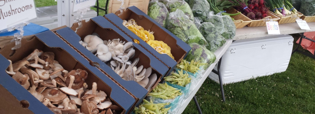 Montauk Farmers Market Returns For The 2016 Season