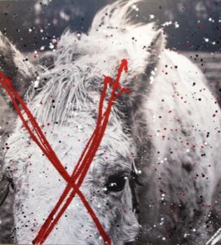 Of Real Life Unicorns: Austin Eckardt